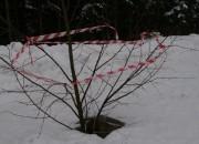 Ukrašeni grm za zaštitu od upada u šahtu